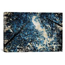 Blue Forest II by Derek Scott Gallery Wrapped Canvas Artwork