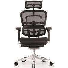 Ergo Elite High Back 26.4'' W x 26'' D x 45.3'' H Adjustable Height Mesh Office Chair - Black